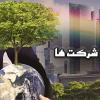 مسئولیت اجتماعی ( CSR )